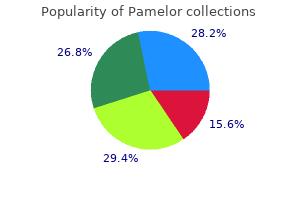 buy discount pamelor online
